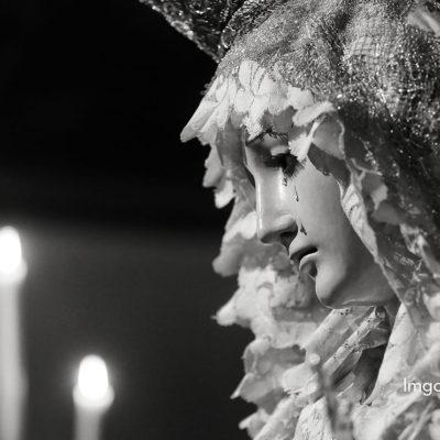 Fotógrafo de Málaga. 21/10/16