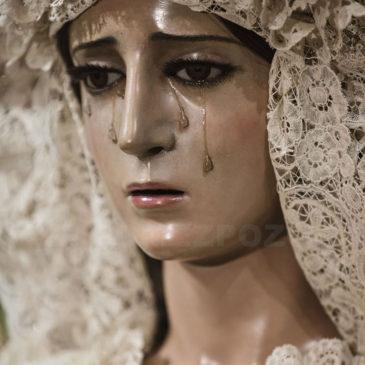 Cofradías: Besamano de la Esperanza de Málaga